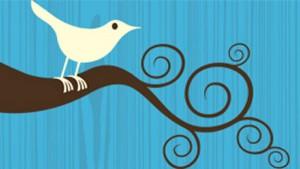 Twitter bird logo CityVille, JM Morgan, negócio, pictures, twitter, Wall Street Journal, Zynga