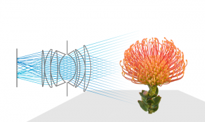 Lytros_sensor de campos de luz