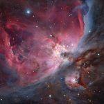 O grupo Trapezio e a nebulosa Orion fotografadas pelo húngaro László Francsics ganhou a categoria alcance robótico