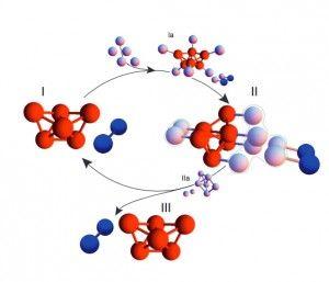 Revestir microesferas com um material especial pode fazê-las construir espontaneamente um formato predeterminado, como o tetraedro (em vermelho), o que, então, desencadeia um processo de colocação de esferas próximas em estruturas idênticas. Crédito: Michael Brenner/ Proceedings of the National Academy of Science
