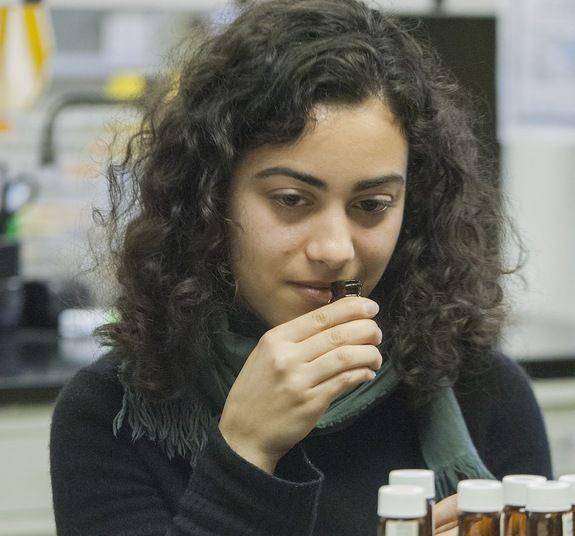 Voluntária analisa mistura de componentes odoríferos. Crédito: Zach Veilleux/  Rockefeller University