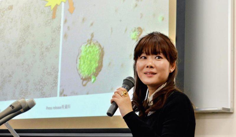 Em artigos publicados em janeiro, a Dra. Haruko Obokata declarou ter sido capaz de criar células-tronco embrionárias a partir de um método inovador. Crédito: Asahi Shimbun/Getty