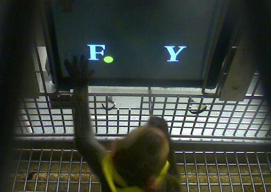 Ma(caco)temática: macaco-rhesus escolhe entre dois símbolos aos quais foram atribuídos valores aritméticos. Estudo aponta que os macacos podem realizar somas simples de valores. Crédito: Margaret S. Livingstone