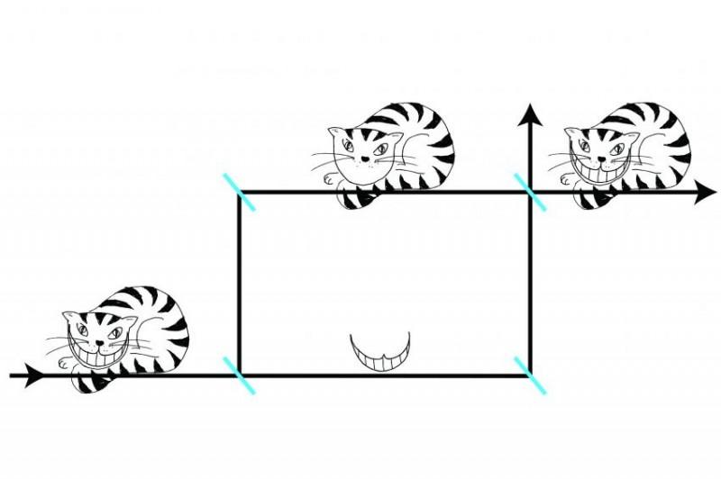 Assim como o Gato de Cheshire pode se dissociar do próprio sorriso, os nêutrons do experimento viajaram por um feixe, enquanto seu magnetismo viajou por outro. Ilustração: Universidade Técnica de Viena; Leon Filter