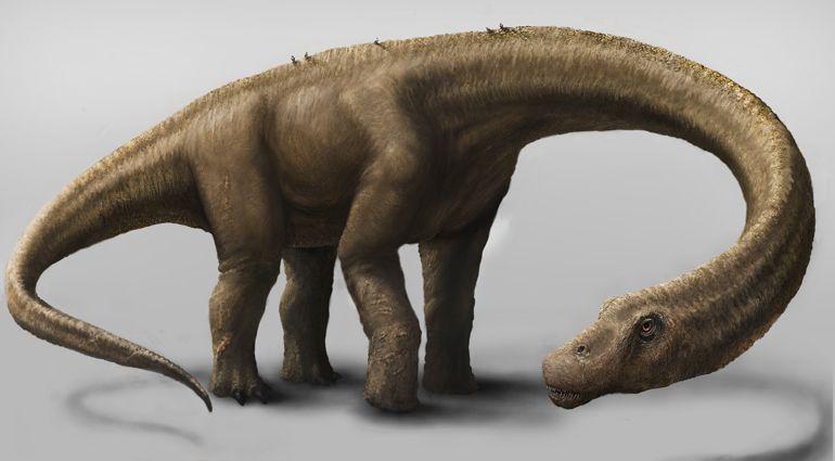 Representação artística do gigantesco dinossauro herbívoro Dreadnoughtus schrani. Crédito: Jennifer Hall