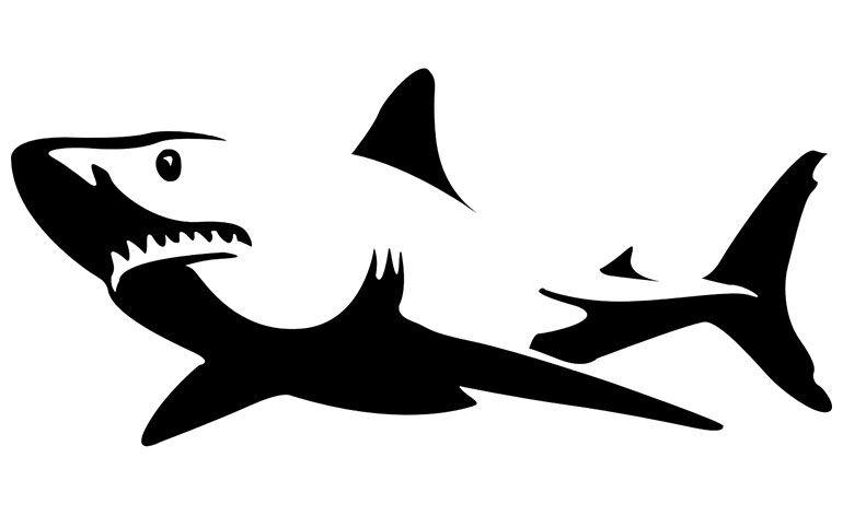 adware Superfish