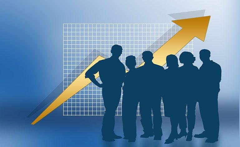 Bizdirect cresce 20% em volume de negócios