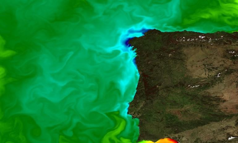 Especialistas mundiais sobre monitorização do ambiente marinho