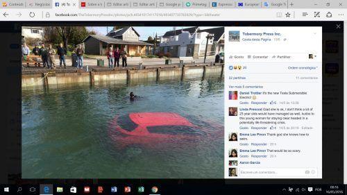 Viagem com GPS acaba na água