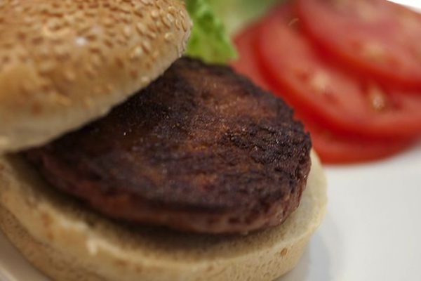 hamburguersintetico hamburguer sintético