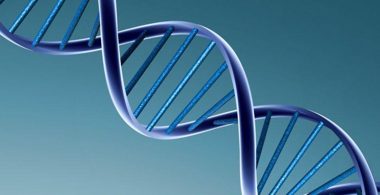molecula adn assinatura, cancro, ciência