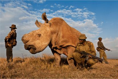 fotografias icónicas que marcaram a última década