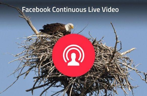 streaming no facebook