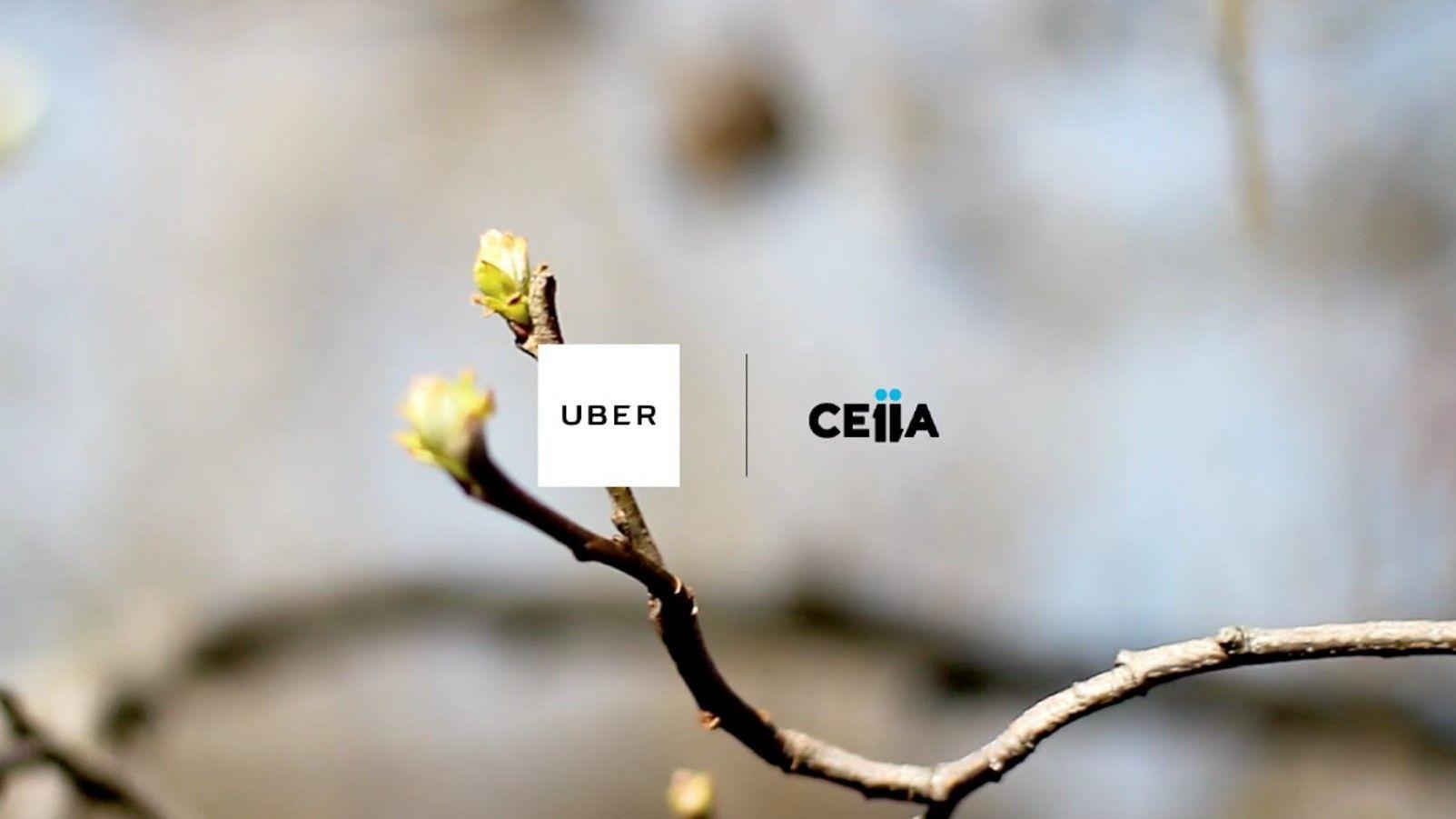 Uber e CEiiA acordam extensão do piloto uberGREEN por mais três meses