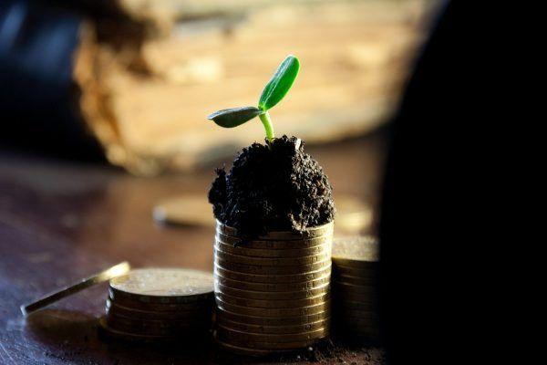 COSEC adia distribuição de dividendos relativa ao exercício de 2019