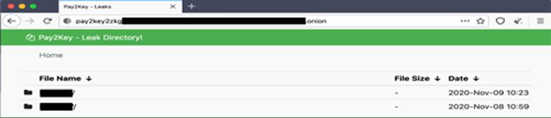 Website da Pay2Key dedicado às fugas de informação