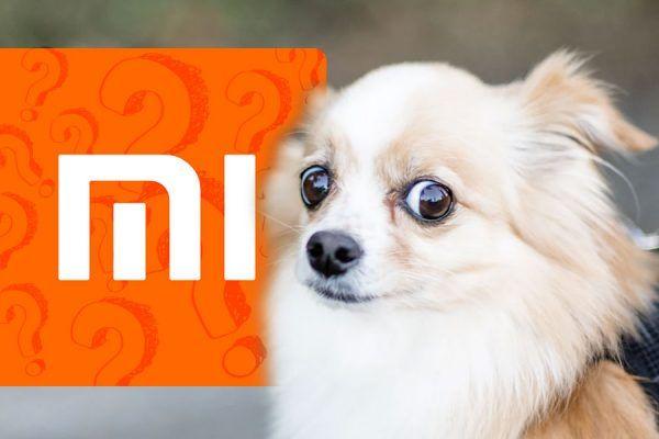 Xiaomi nomes confusos