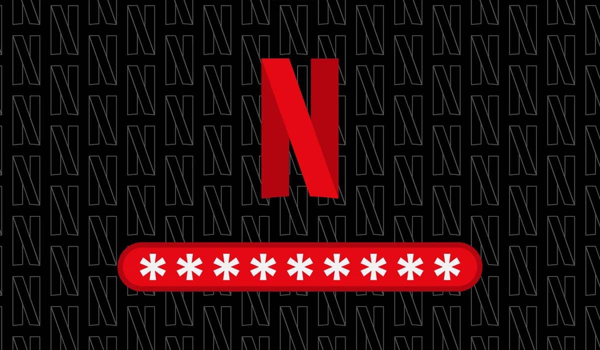 Netflix Password